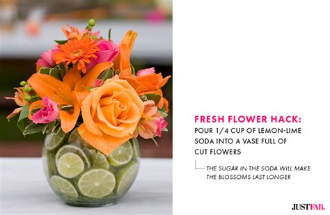 How To Keep Flowers In A Vase Alive by 5 Hacks To Keep Your S Day Flowers Fresh