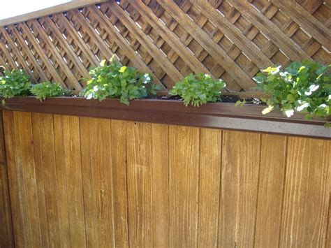 Gutter Planters On Fence by Gutter Planter For Our Fence Easy To Grow And Easy