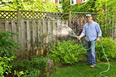 man watering garden stock photo image
