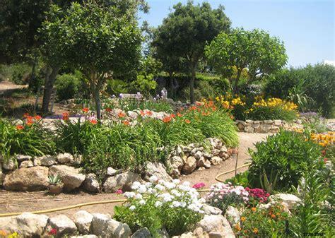 creare un giardino roccioso giardini mgf cosa piantare