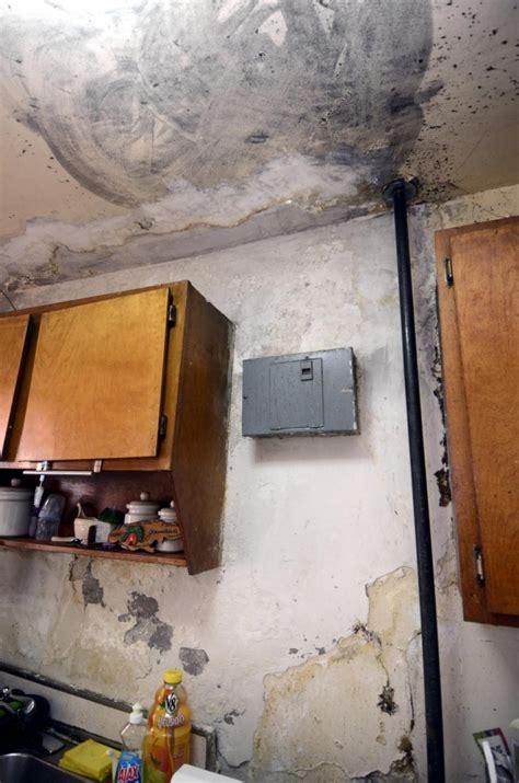 bathroom ceiling leaking apartment mold covers walls and water constantly leaks in bronx