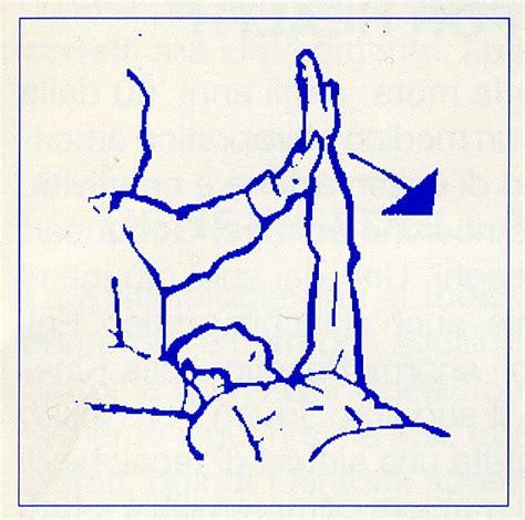 test muscolare test muscolare il tocco per l armonia e la salute
