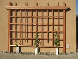 How To Make Trellis For Climbing Plants Wall Grape Trellis By Cantil3v3r Lumberjocks Com