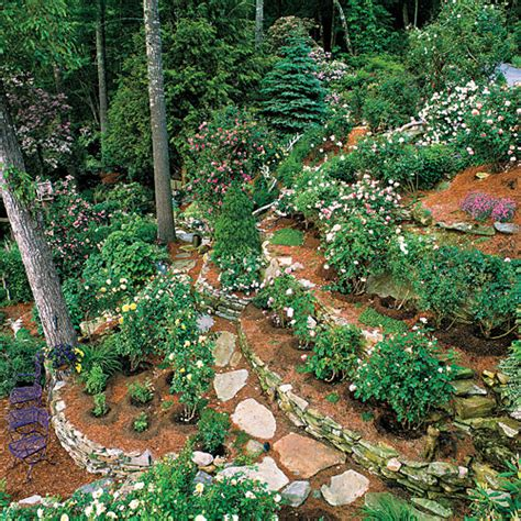 Garden Of On A Mountain Grow Roses With Ease Southern Living