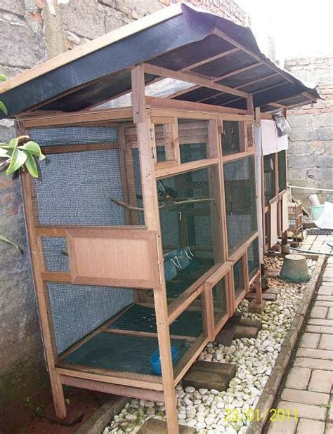Ring Jalan Tas 2 0 Cm Plastik Buckle Acetal Per 12 Pcs tiara bird farm kandang minimalis