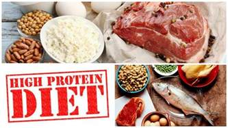 high protein diet diets lifestyle
