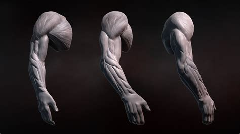 zbrush sculpt pattern zbrush tutorial sculpting human arms in zbrush youtube