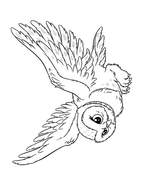 harry potter coloring book owl post free coloring pages of harry potter owl