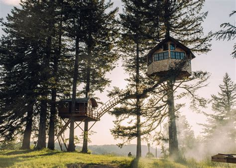 how to re house a so you re a dude who wants to build a tree house the new yorker