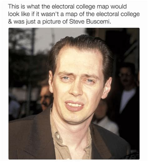 Steve Buscemi Meme - this is what the electoral college map would look like if