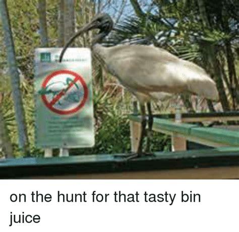 On The Hunt For by 꿰 On The Hunt For That Tasty Bin Juice Dank Meme On Sizzle