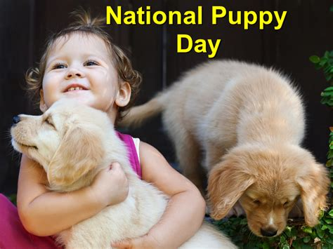 when is national puppy day 2017 commemorating national puppy day march 23 2017 coastal plains animal clinic