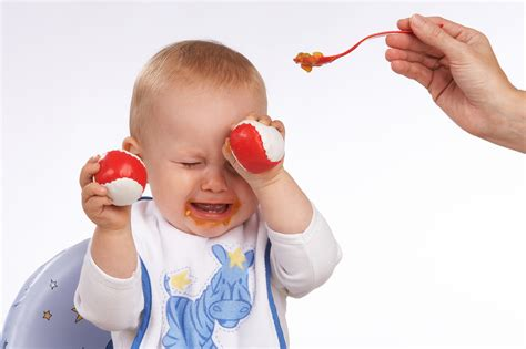 no more fussy toddlers great meals that all toddlers will books pappa e capricci cosa fare se il bambino non mangia
