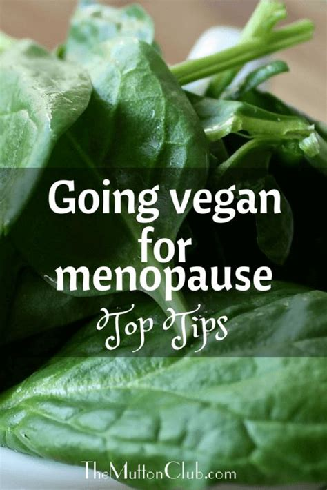 vegan mood swings 17 best images about health women aging on pinterest