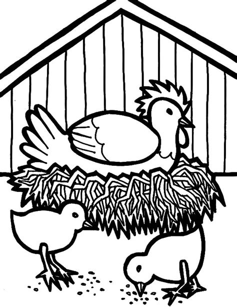 chicken nest coloring page coloring pages for kids birds heron laying egg coloring