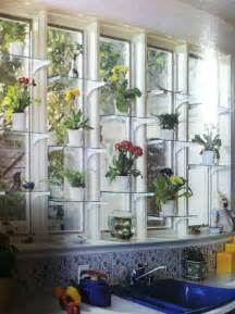 glass window shelves for plants home ideas