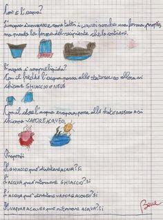 testo piccola ketty didattica scuola primaria scienze classe seconda math