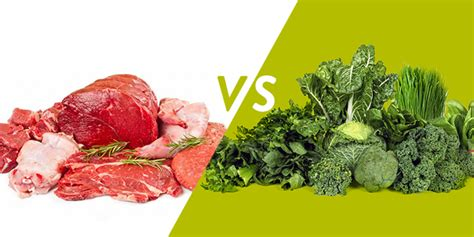 vegetables vs protein plant vs animal proteins how a vegetarian diet crushes