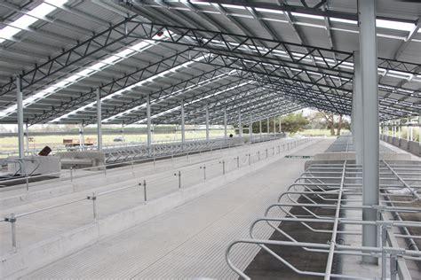 the dairy barn redesigned modern farmer greenpark dairy barn system case study 187 dairy barn systems