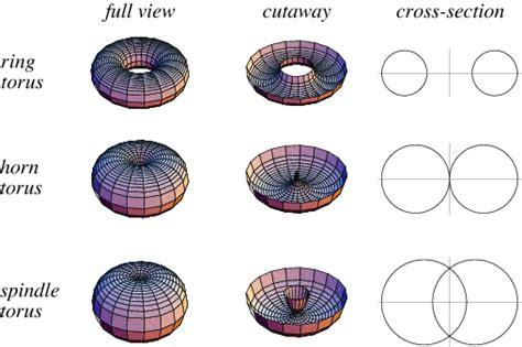 torus math images