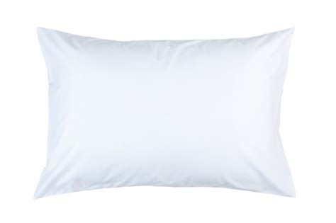 Ntn Background Check Pillows Transparent Background