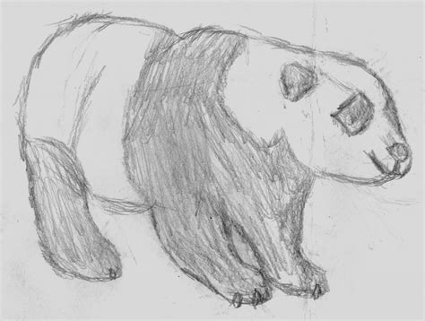 Sketches Easy To Draw by Easy Drawings Animals Pencil Drawing