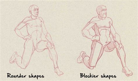 Drawing Anatomy by Drawing Anatomy For Beginners Top 5 Dos And Don Ts