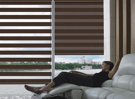 Cordless Roller Blinds Zebra Room Darkening Sheer Roller Shades Blindsshopper Com