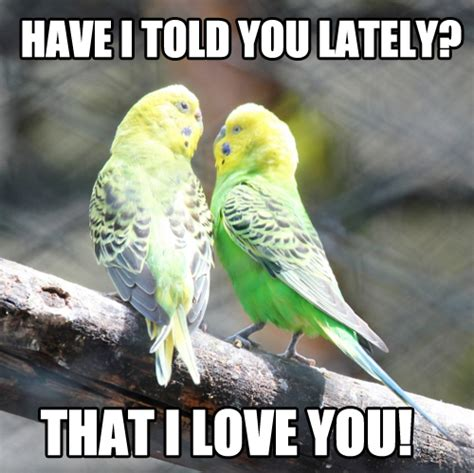 Cute Love Memes For Her - cute love memes for him and for her love dignity