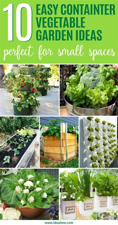 easy container vegetable garden ideas   yard