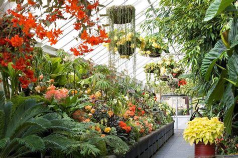 Wellington Botanic Garden 187 Wellingtonnz Wellington Botanical Gardens