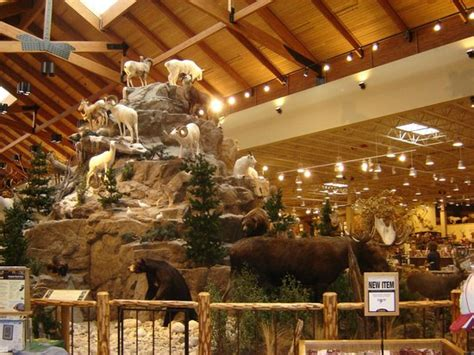 interieur picture of cabela s general store cafe