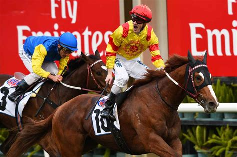 palentino could give weir first sydney win