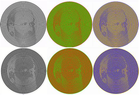 color perception color theory basics you need to widewalls
