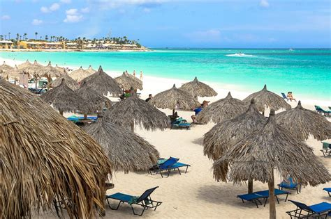 divi aruba the best all inclusive resort in aruba camels chocolate
