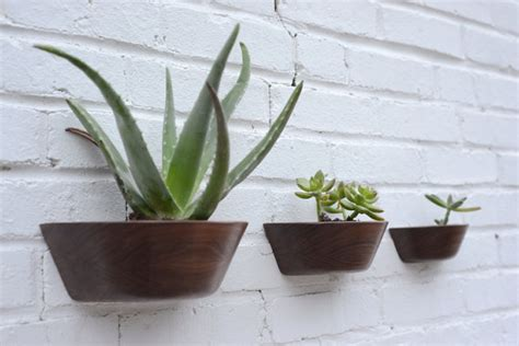 Cactus Wall Planter by Wall Mounted Cactus Planters The Lorenas