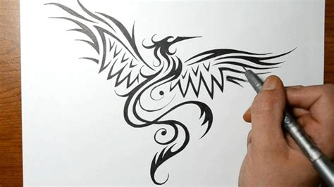 how to draw a phoenix bird tribal tattoo design style