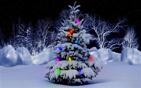 snow covered christmas tree free wallpaper download