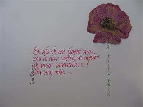 gedicht toon hermans bloem meer dan 1000 bloem citaten op pinterest citaten kind