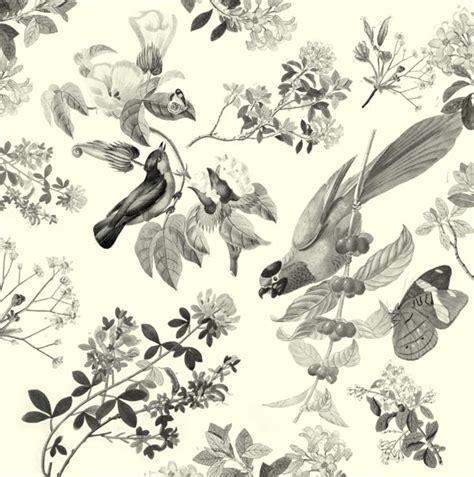 classic bird wallpaper vintage bird wallpaper interior ideas pinterest