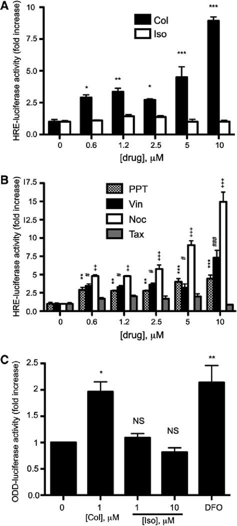 Activation of markers of hypoxic adaptive response by