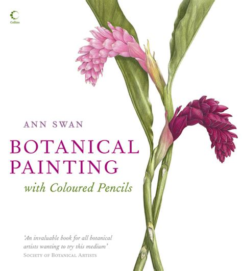 beginner s guide to botanical flower painting books picture