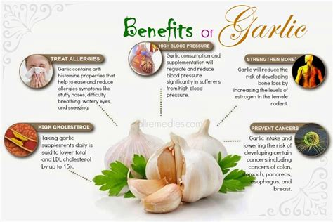 penies many hair 35 proven amazing benefits of garlic for skin hair and