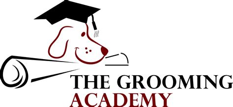 grooming courses city and guilds level 3 certificate for stylists