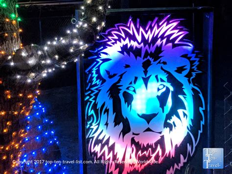 zoo lights tucson az 5 tucson events not to be missed top ten travel