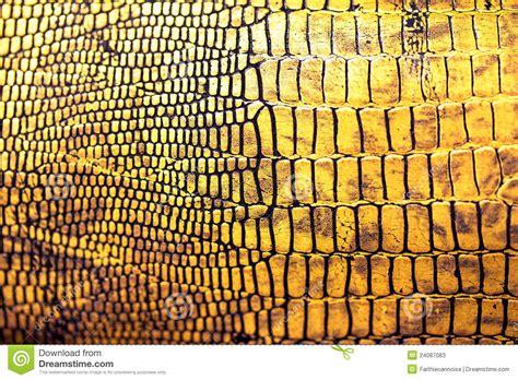 reptile skin texturebackground stock image image