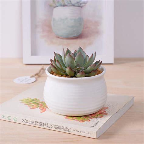 pots for succulents for sale sale white glazed ceramic flower pots small decorative planter for succulents novelty