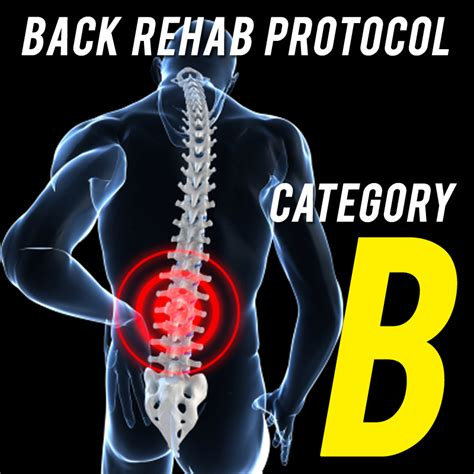 Back Detox Treatment by Essential Back Rehab Strategies Category B Strengthen