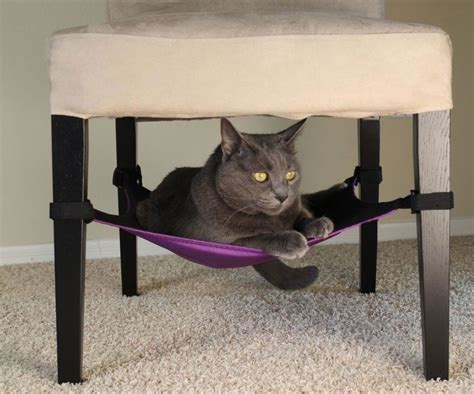 Chair Cat Hammock by The Important Of Cat Hammock Bed
