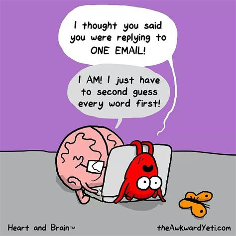 and brain an awkward yeti collection 86 best images about and brain on